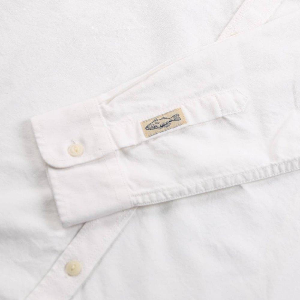 Coton oxford